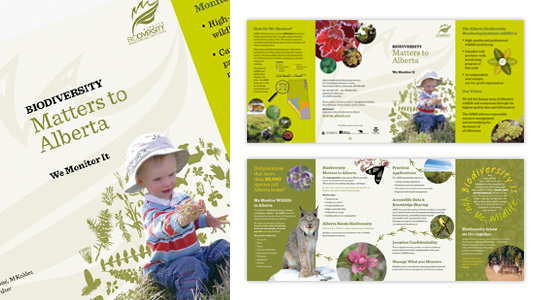Alberta Biodiversity Monitoring Institute: Gatefold pamphlet design